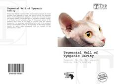Bookcover of Tegmental Wall of Tympanic Cavity