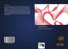 Capa do livro de Sembleçay