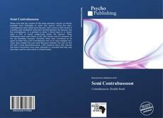 Semi Contrabassoon kitap kapağı