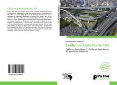 Buchcover von California State Route 107
