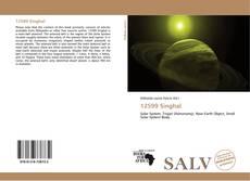 Buchcover von 12599 Singhal