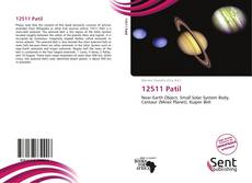 Bookcover of 12511 Patil