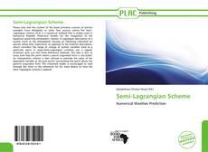 Обложка Semi-Lagrangian Scheme