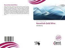 Couverture de Navachab Gold Mine