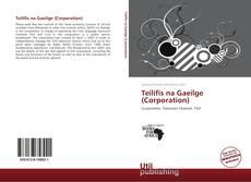 Portada del libro de Teilifís na Gaeilge (Corporation)