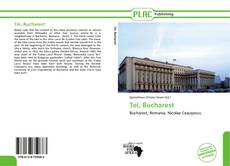 Bookcover of Tei, Bucharest