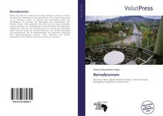 Portada del libro de Bernabrunnen
