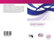 Peptide Transporter 1 kitap kapağı