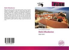 Dolní Bludovice kitap kapağı