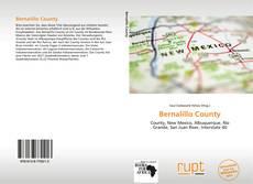 Bookcover of Bernalillo County