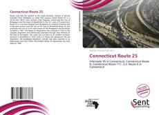 Connecticut Route 25 kitap kapağı