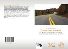 Capa do livro de Connecticut Route 30