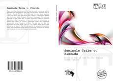 Bookcover of Seminole Tribe v. Florida