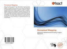 Couverture de Perceptual Mapping