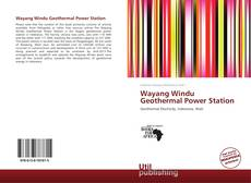 Bookcover of Wayang Windu Geothermal Power Station