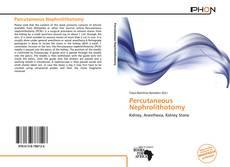 Borítókép a  Percutaneous Nephrolithotomy - hoz