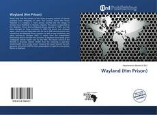 Bookcover of Wayland (Hm Prison)