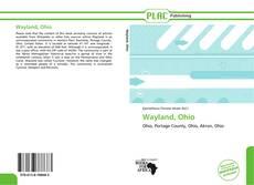 Capa do livro de Wayland, Ohio