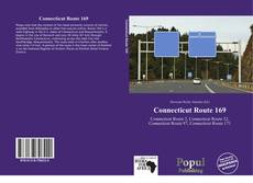 Capa do livro de Connecticut Route 169