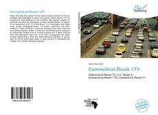 Capa do livro de Connecticut Route 173