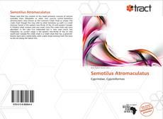 Обложка Semotilus Atromaculatus