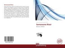 Bookcover of Semowane River