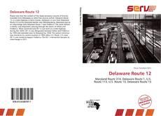 Capa do livro de Delaware Route 12