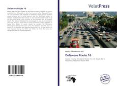 Bookcover of Delaware Route 16