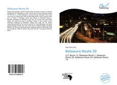 Capa do livro de Delaware Route 30