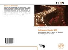 Bookcover of Delaware Route 300