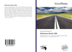 Capa do livro de Delaware Route 286