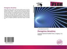 Capa do livro de Peregrino Anselmo