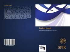 Portada del libro de Perfect Angel