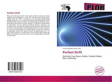 Bookcover of Perfect Drift