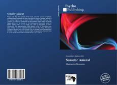 Bookcover of Senador Amaral
