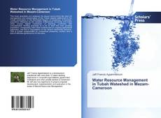 Обложка Water Resource Management in Tubah Wateshed in Mezam-Cameroon