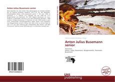 Bookcover of Anton Julius Busemann senior
