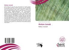 Bookcover of Anton Junak