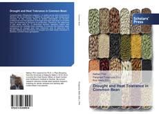 Drought and Heat Tolerance in Common Bean kitap kapağı