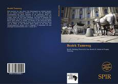 Bookcover of Bezirk Tamsweg