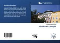 Bezirksamt Eppingen kitap kapağı