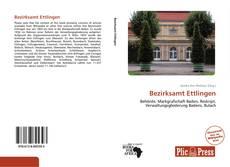 Bezirksamt Ettlingen kitap kapağı