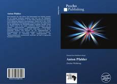 Anton Pfahler kitap kapağı