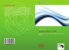 Copertina di Spotted Box Turtle
