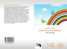 Bookcover of Anton Prommersberger