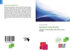 Обложка Spotted Lady Beetle