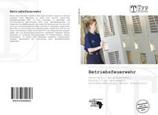 Bookcover of Betriebsfeuerwehr