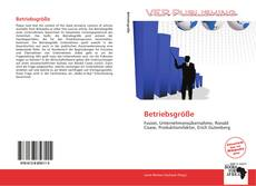Bookcover of Betriebsgröße