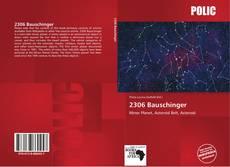 Portada del libro de 2306 Bauschinger