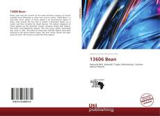 Bookcover of 13606 Bean